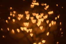 tumblr-photography-christmas-lightssuccessfully-turned-my-christmas-lights-into-little-hearts-c-uc3qixri