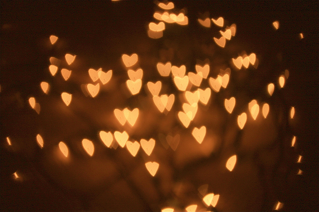 Tumblr Photography Christmas Lightssuccessfully Turned My Christmas Lights  Into Little Hearts C Uc3qixri